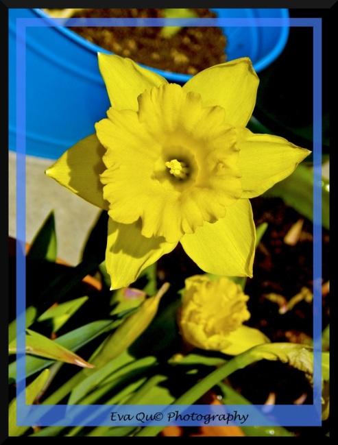 03/29/10 -spring