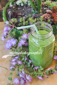 ewa samples, avocado-spinach-cucumber smoothie-7