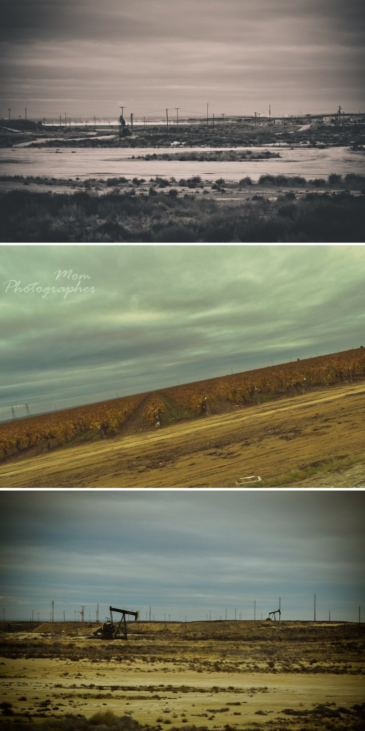 mom photographer, x-mas road trip, collage 1