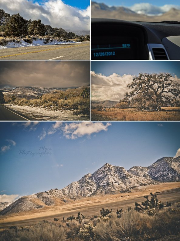 mom photographer, x-mas road trip, collage 4