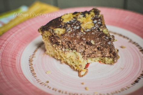 gluten-free-coconut-flour-cheesecake-coffee-cake-mom-photographer (4 of 1)