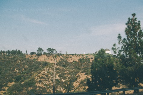 trip-to-los-angeles-hollywood-mom-photographer-12