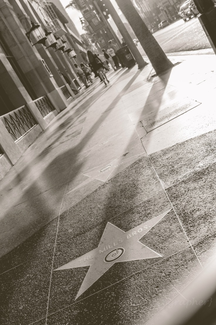 trip-to-los-angeles-sunset-blvd-hollywood-mom-photographer-16
